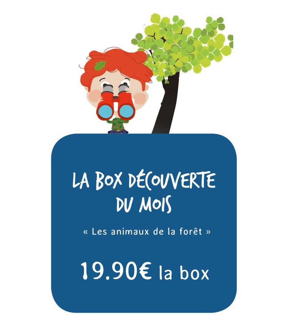 Box Picadelo les animaux de la forêt