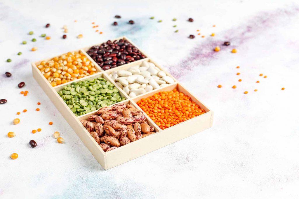 sources de protéine